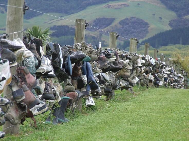 обувной забор