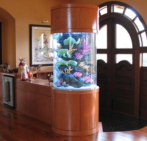аквариум в прихожей